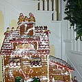 Gasparilla Gingerbread by Barbie Corbett-Newmin