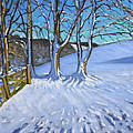 Gate And Trees Winter Dam Lane Derbyshire by Andrew Macara