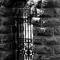 Gate To Grave  by The Artist Project