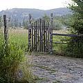 Gate To Peaceful Paradise by Lorraine Devon Wilke