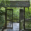 Gates Of Tranquility by Sandra Bronstein