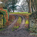 Gateway To Autumn by Adrian Evans