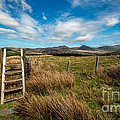 Gateway To The Mountains by Adrian Evans