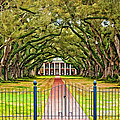 Gateway To The Old South Paint by Steve Harrington