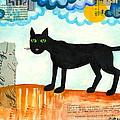 Gato Mexico by Catherine Athena Louise