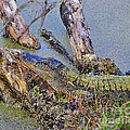 Gator Camo by Al Powell Photography USA