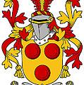 Gavin Coat Of Arms Irish by Heraldry