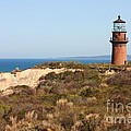 Gay Head Lighthouse by Carol Groenen