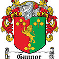 Gaynor Coat Of Arms Meath  Longford by Heraldry