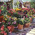 Gazebo Garden by David Lloyd Glover