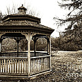 Gazebo by John Rizzuto