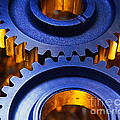 Gears by Terry Why