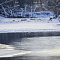 Geese On Ice by Bonfire Photography