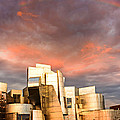 Gehry Rainbow by Joe Mamer