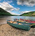 Geirionydd Lake by Adrian Evans