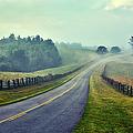 Gentle Morning - Blue Ridge Parkway II by Dan Carmichael