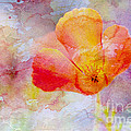 Gentle Touch  by Heidi Smith