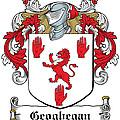 Geoghegan Coat Of Arms Westmeath Ireland by Heraldry