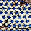 Geographic Tile by Sylvia Thornton