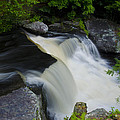George W Childs Park Waterfall by Bill Cannon