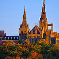 Georgetown University by Mitch Cat