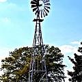 Georgia Windmill by Tara Potts