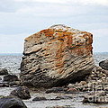 Georgian Bay Gneiss by Elaine Mikkelstrup