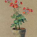 Geraniums In A Pot  by Odilon Redon