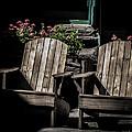 Geraniums by Mitch Shindelbower