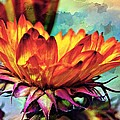 Gerbera Patchwork by Emily Sparks