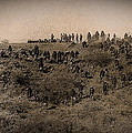 Geronimo's Band Of Warriors When He Surrendered To General Crook  September 4 1886 by David Lee Guss
