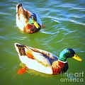 Get Your Ducks In A Row by Jodie  Scheller