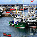 Getaria Fishing Fleet by Louise Heusinkveld