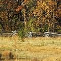 Gettysburg Battlefield October by Mary Carol Williams
