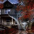 Ghost by Debra and Dave Vanderlaan