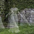 Ghost In The Garden by Sara Hudock