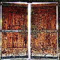 Ghostly Doors By Diana Sainz by Diana Raquel Sainz