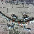 Giant Lizard On A Wall by Carl Deaville