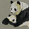 Giant Panda by Juan  Bosco