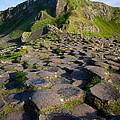 Giant's Causeway Green Peak by Inge Johnsson