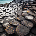 Giant's Causeway Hexagons by Inge Johnsson