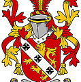Gibbons Coat Of Arms Irish by Heraldry