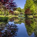 Gibbs Garden by Debra and Dave Vanderlaan