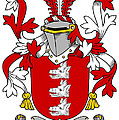 Gibney Coat Of Arms Irish by Heraldry