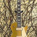 Gibson Les Paul Gold Top '56 Guitar by Phyllis Tarlow
