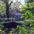 Giethoorn Thatch by Bob Phillips