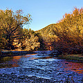 Gila River Gold by Ryan Seek
