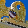 Gilded Eagle by Barbara McDevitt