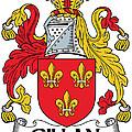 Gillan Coat Of Arms Irish by Heraldry