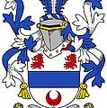 Gilligan Coat Of Arms Irish by Heraldry